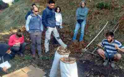 Sistemi Agroforestali e colture arboree. 30 settembre 2017